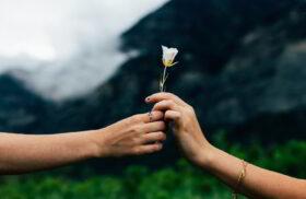 Glücksforschung - Warum schenken glücklich macht: Nahaufnahme zweier Hände. Die eine überreicht der anderen eine einzelne weiße Blume. Im Hintergrund unscharf Wolken, Berge und Grün. Wer anderen selbstlos eine Freude macht, fühlt sich selbst glücklicher. Foto: Evan Kriby on Unsplash