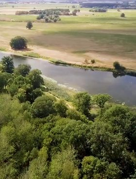 Das tut gut: Drohnenflug über das Elbetal, Blick auf den Nebenarm großer Streng. Mit Unterstützung der Heinz Sielmann Stiftung sollen die Altarme wieder mit der Elbe verbunden werden. Die Heinz Sielmann Stiftung ist Mitglied der Initiative