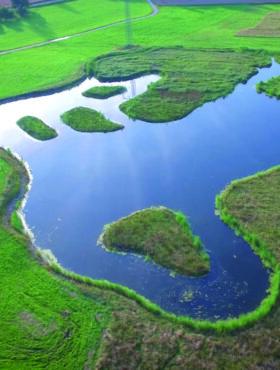 Das tut gut: Sielmanns Biotopverbund Bodensee in Überlingen, möglich auch durch Erbschaften und Vermächtnisse zum Ankauf wertvoller Flächen. Die Heinz Sielmann Stiftung ist Mitglied der Initiative