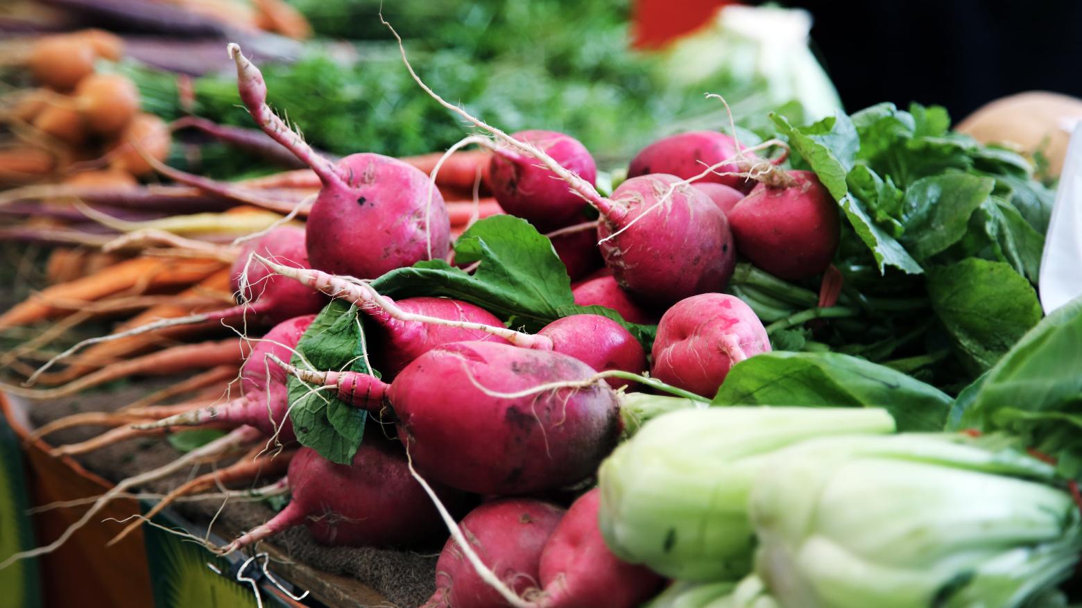 Nachhaltig leben: Nahaufnahme frisches Wurzelgemüse, Radieschen und Karotten. Wandel beginnt mit kleinen Veränderungen, zum Beispiel beim Einkauf. Bio-Gemüse, regional und saisonal ist eine Möglichkeit. In: Prinzip Apfelbaum. Magazin über das, was bleibt. Foto: Caroline Attwood/Unsplash