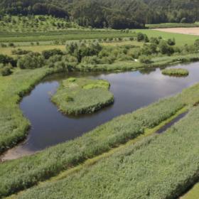 Das tut gut: Blick auf den Heinz-Sielmann-Weiher. Um den Artenschwund aufzuhalten, schafft die Heinz Sielmann Stiftung im Landkreis Ravensburg einen weiteren Biotopverbund. Die HSS ist Mitglied der Initiative