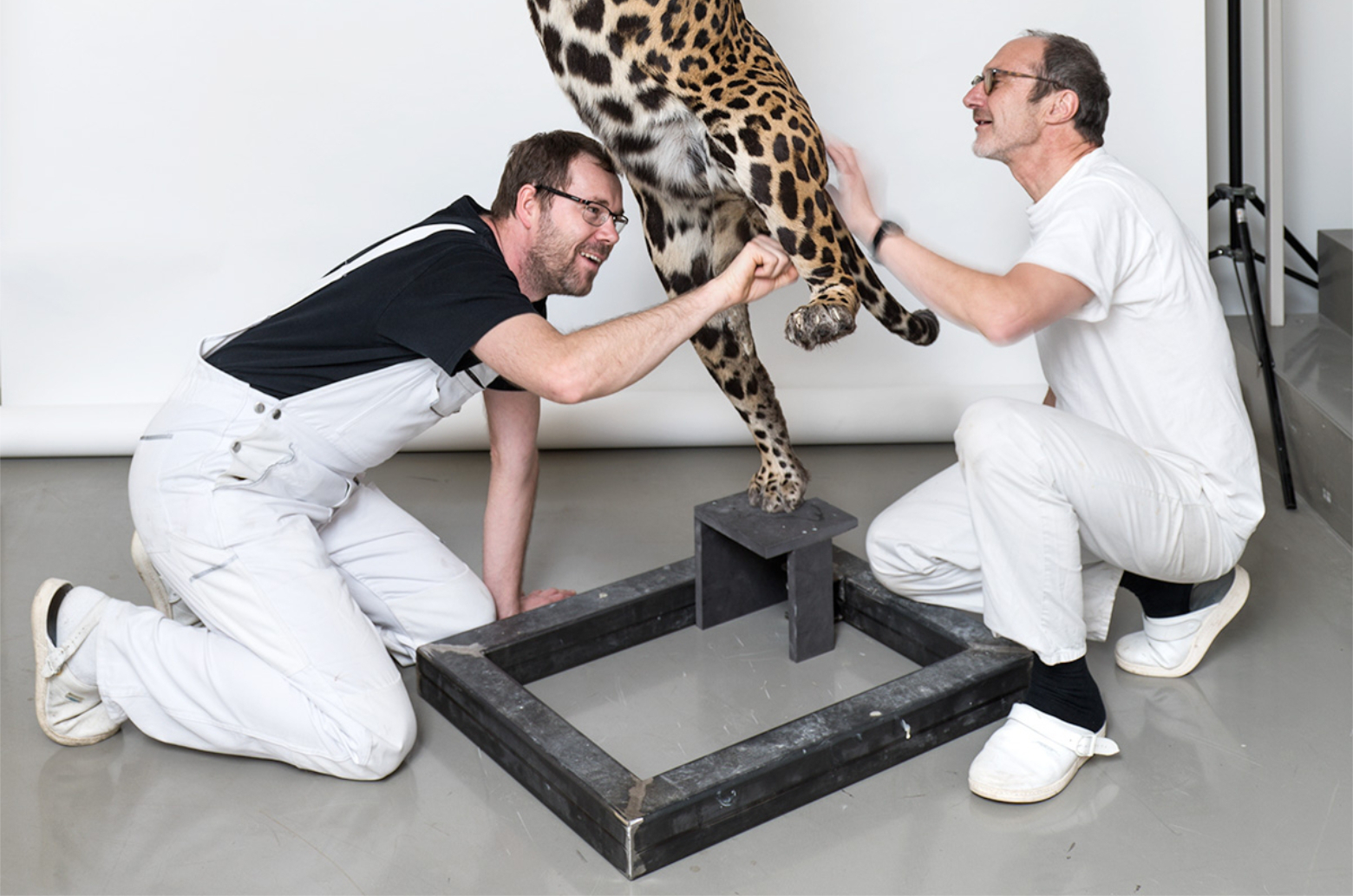 Bewahren für die Zukunft: Präparatoren des Museums für Naturkunde Berlin arbeiten an einem Jaguar-Modell. Die Sammlungen und Präparate laden ein, Fragen zu stellen. Wie können Museen die Zukunft bereiten? Fragen an Direktor Johannes Vogel. In: Prinzip Apfelbaum. Magazin über das, was bleibt. Foto: Carola Radke/MfN