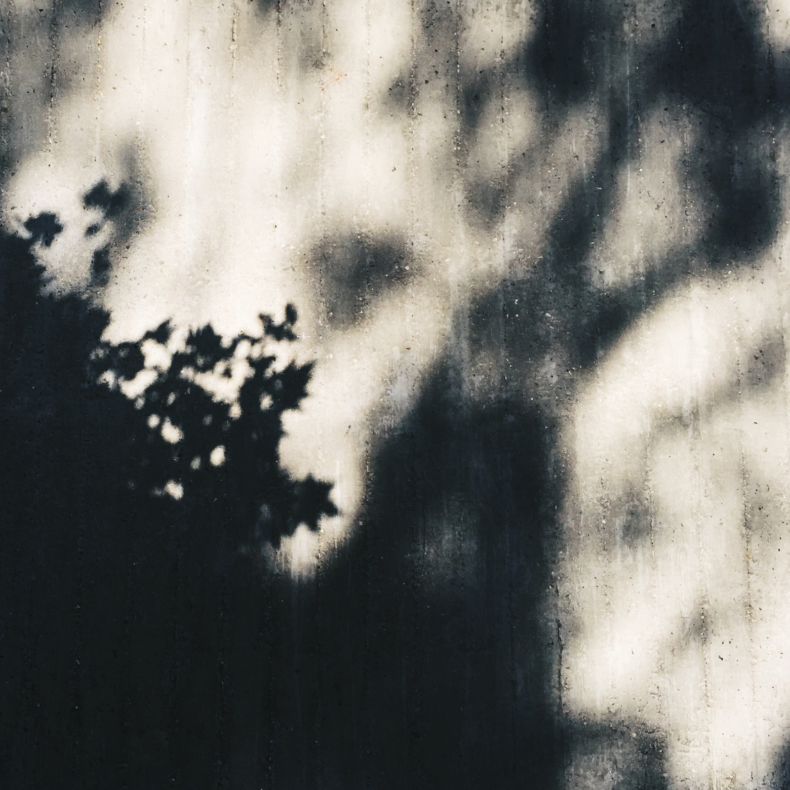 Sterbehilfe: Schatten auf einer weißen Wand. Symbolbild. Wo genau die Grenze zwischen legal und illegal verläuft, ist für den Angehörige in der Notlage nur schwer zu verstehen. Sterbehilfe – ein Blick auf Pro und Contra. In: Prinzip Apfelbaum. Magazin über das, was bleibt. Foto: Pacific Austin on Unsplash