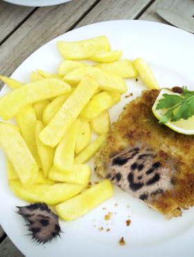 Das tut gut: Pommes, Schnitzel und Jaguarfell auf einem Teller. Billiges Soja zerstört Regenwälder. Die Deutsche Umwelthilfe fordert einen Stopp für noch mehr Soja-Importe. Die DUH ist Mitglied der Initiative