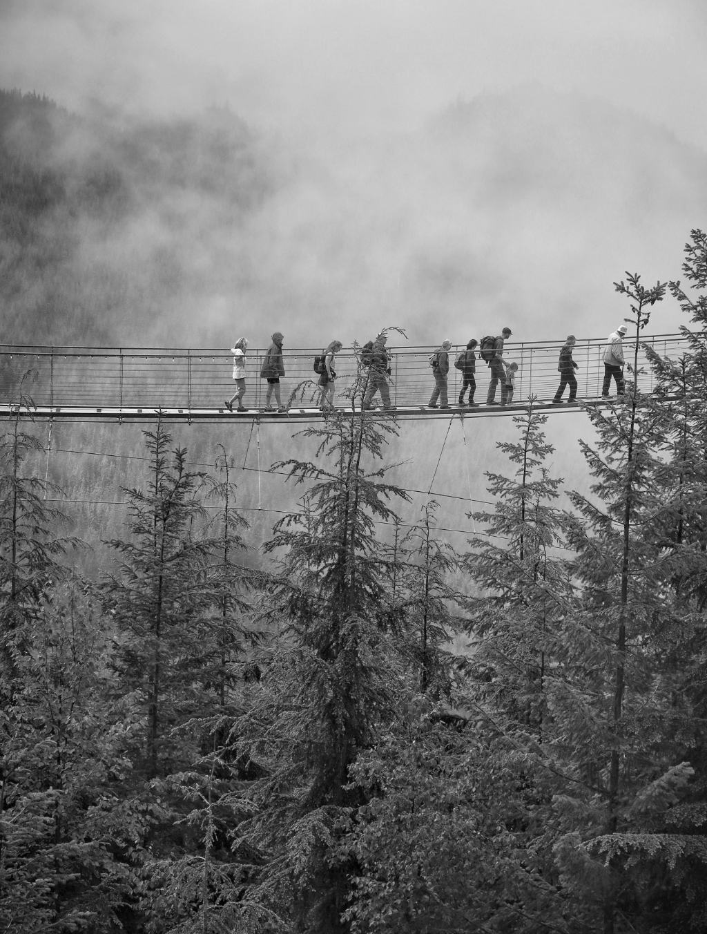 Vertraut euch: Eine Gruppe Wanderer läuft überquert eine Schlucht über eine Hängebrücke. Symbolbild. Täglich begeben wir uns in die Hand anderer. Ein Risiko, das sich lohnt. Denn wer anderen vertraut, dem wird auch Vertrauen geschenkt. In: Prinzip Apfelbaum. Magazin über das, was bleibt. Foto: Andrew Seo/Unsplash