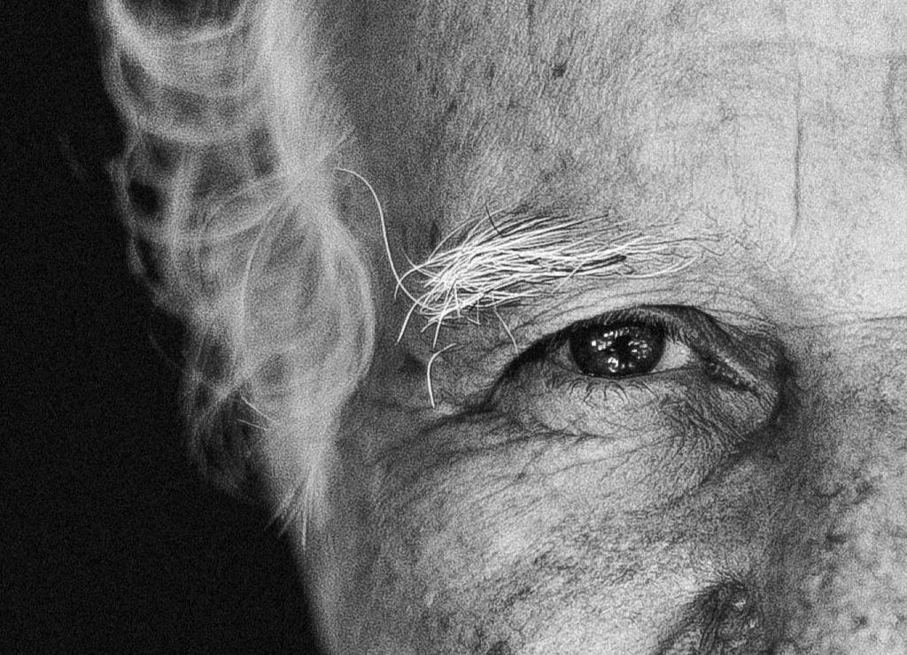 Auge eines älteren Mannes: Weise Menschen akzeptieren das Leben in all seinen Facetten und den Tod als einen Teil davon.