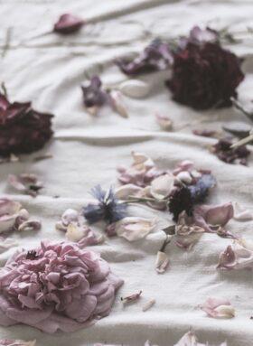 Blüten liegen verstreut auf einem Laken – Rituale der Trauer.